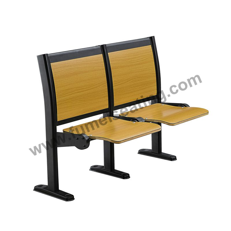 College Lecture Hall Seating FM-2030