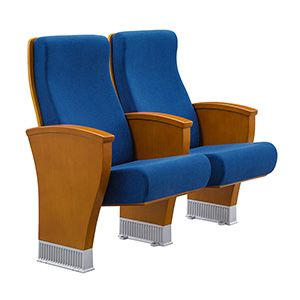 Comfortable Theater Seat FM-2109